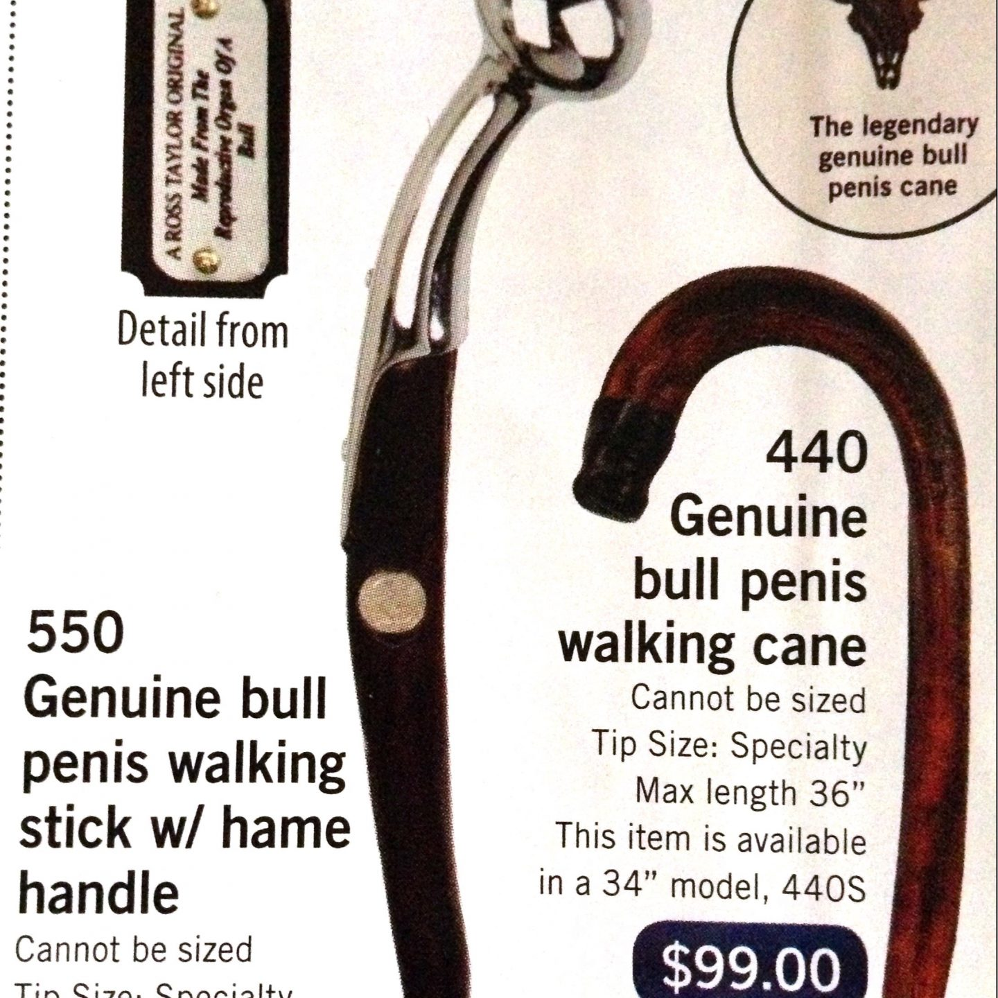 All hail penis cane! (playing favorites and musical chairs)