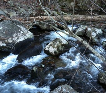 Episode 26: Pilgrim at Little Piney Creek